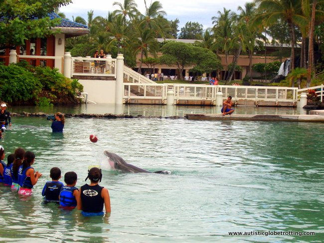 Handling Dolphin Encounters for Kids with Autism 1