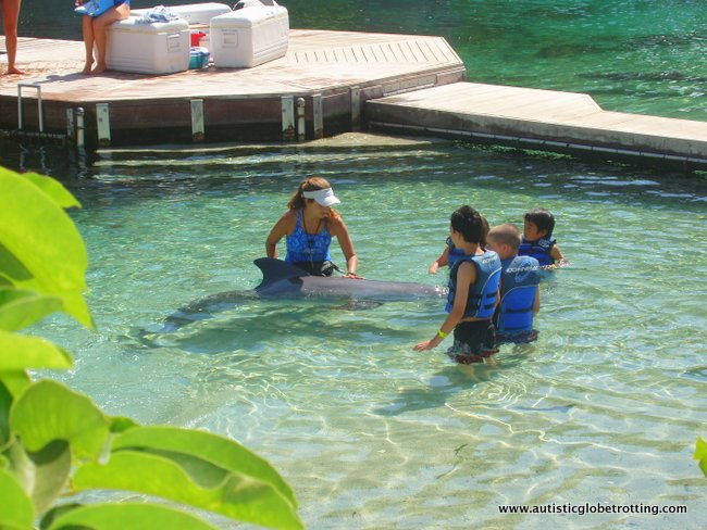 Handling Dolphin Encounters for Kids with Autism 4