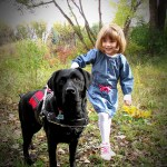 Service Dog Horror Story – Don't let this happen to you