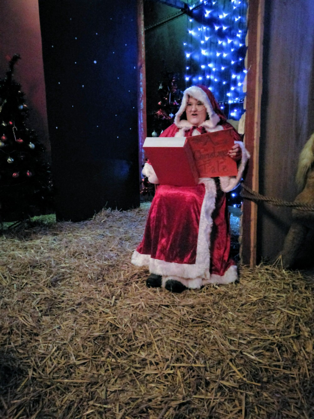 A lady dressed as Mrs Claus, sat on a chair reading a book.