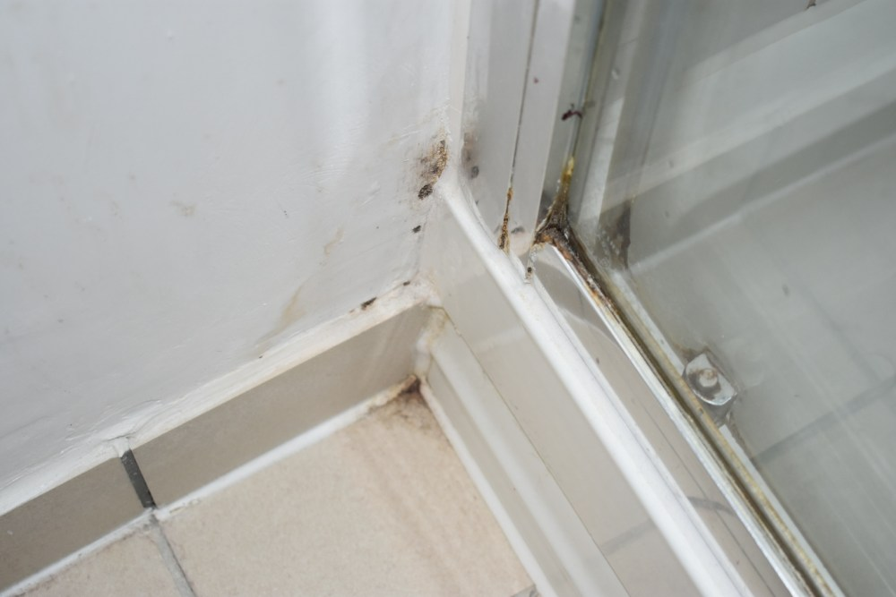 Mould in the corner of a bathroom