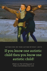 If you know one autistic child then you know one autistic child!