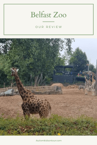 Belfast Zoo, Northern Ireland
