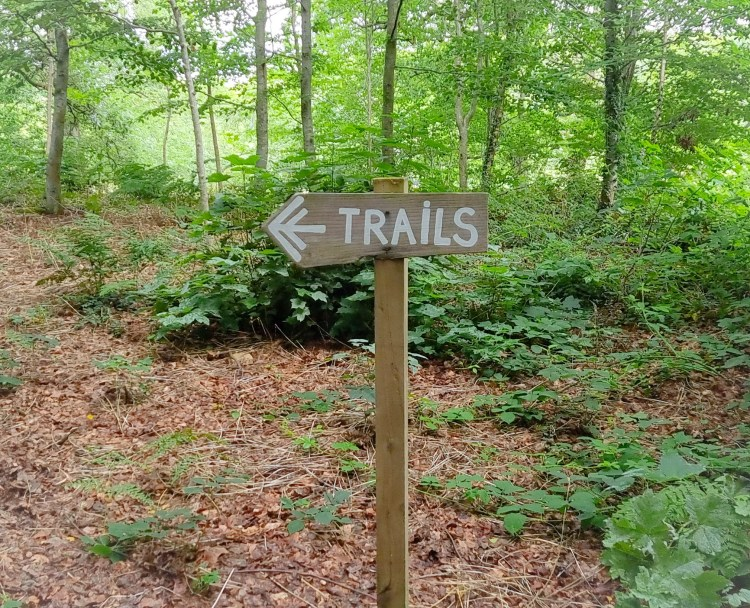 A sign on the woodland trails at finnebrogue woods