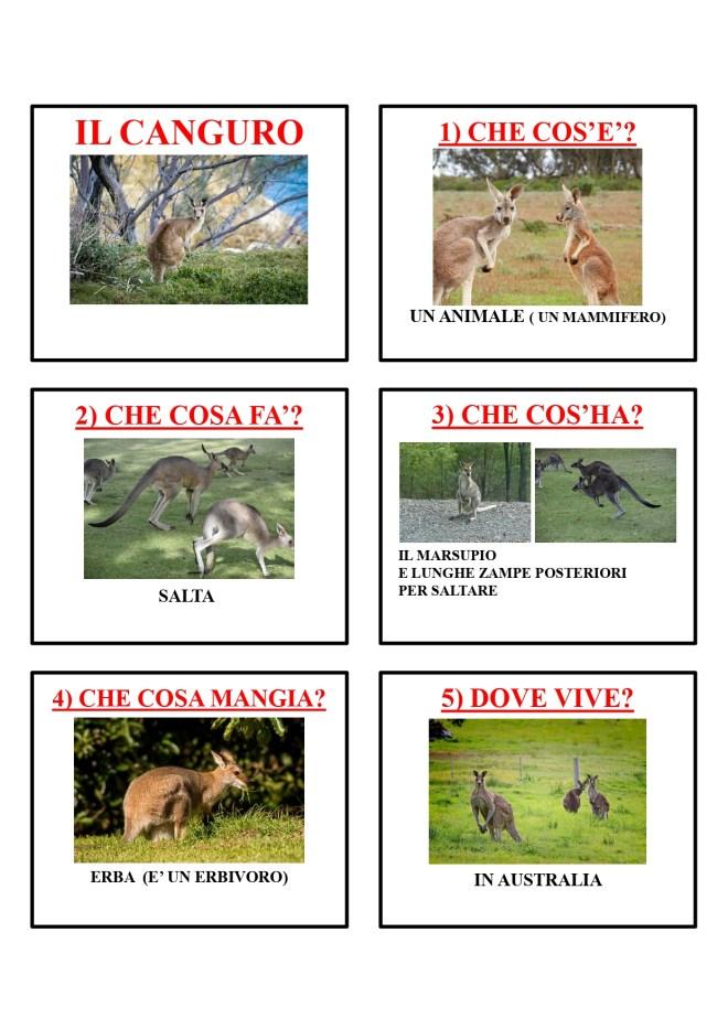 gli animali-i mammiferi_page-0008