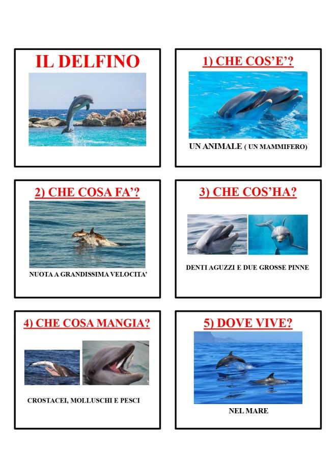 gli animali-i mammiferi_page-0015