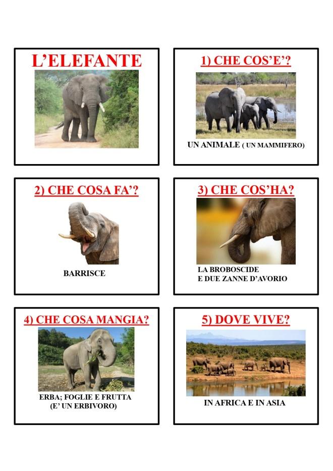 gli animali-i mammiferi_page-0017