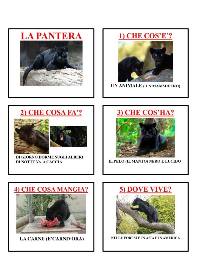 gli animali-i mammiferi_page-0033