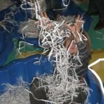 La necesidad de enseñar a jugar a los niños con autismo