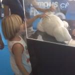 """Una foca de peluche se convierte en el primer """"robot terapéutico""""para niños con autismo"""