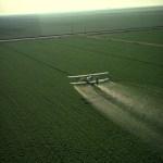 Pesticidas: Evidencias científicas de su relación con desórdenes neurológicos y autismo