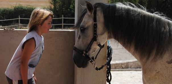 Terapia Asistida con Animales  Caballos - Autismo Diario 69e036d7f03