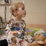 Pediatras apuestan por tratamientos multidisciplinares para mejorar el diagnóstico de los TEA