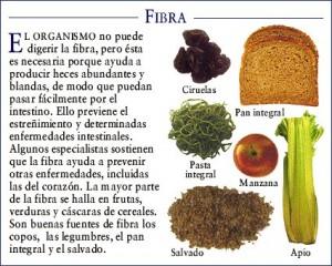 fibra-3