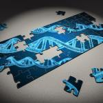 Mutaciones postcigóticas y autismo