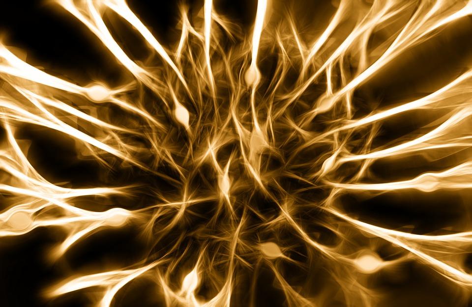 Las conexiones de redes cerebrales motoras y sensoriales, pueden estar mal conectadas en los cerebros con autismo