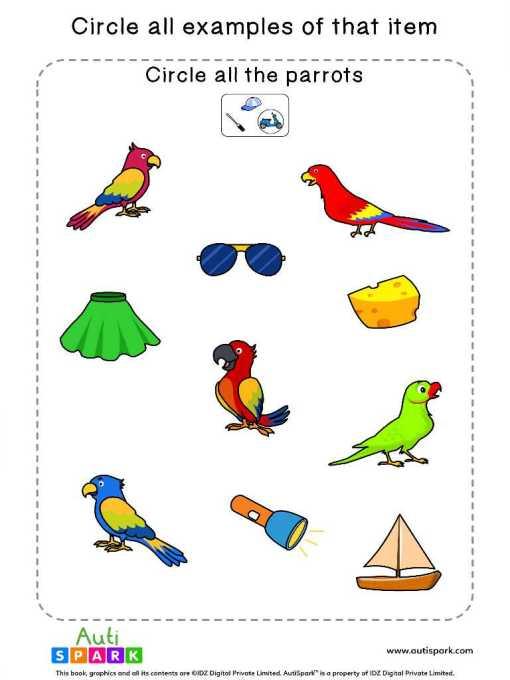 Circle The Birds 2