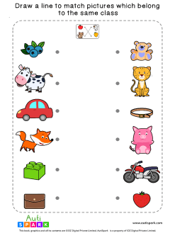 Match Pictures By Class #10 – Fun Matching Worksheet