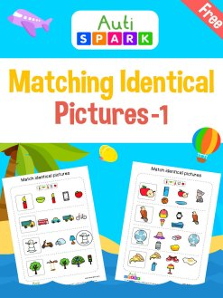 Matching Pictures - Circle The Same Pictures Workbook : 1