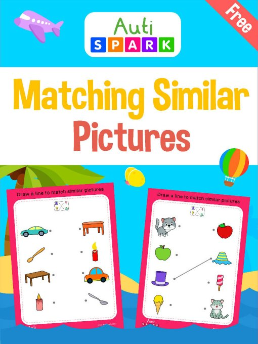 Matching Pictures - Best Match Similar Pictures Workbook : 1