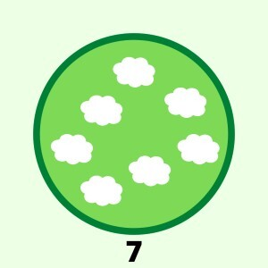 learn count 7