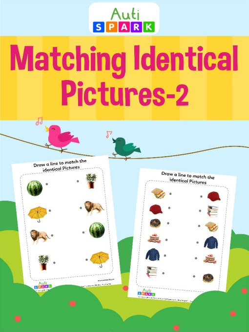 14 Match The Identical Pictures 2