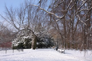 Winter in the Municipal South Park in Wroclaw