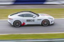 Jaguar-Track-Day-20170830- (12)
