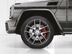 mercedes-amg-g65-special-ed_1