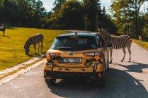 Safari_DvurKralove_Toyota_36_of_40