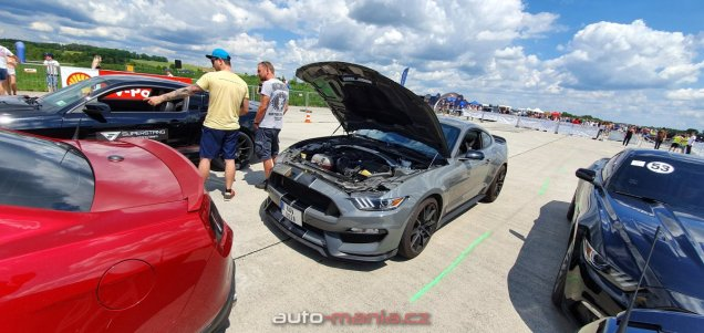 mustang-riders-sprinty-2019-ford-mustang- (15)