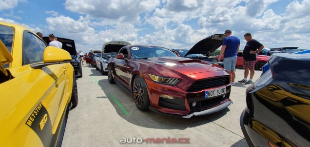 mustang-riders-sprinty-2019-ford-mustang- (23)