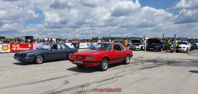 mustang-riders-sprinty-2019-ford-mustang- (3)