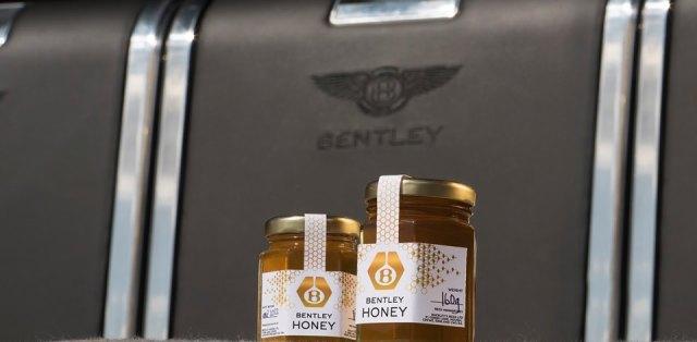 bentley med (3)