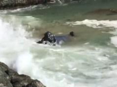 policejni-honicka-auto-v-oceanu-video