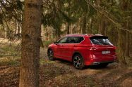 test-2021-plug-in_hybrid-SEAT_Tarraco_e-Hybrid- (18)