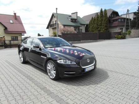Jaguar XJ do ślubu