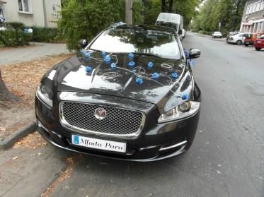 Dekoracja niebieska Jaguar XJ Kraków