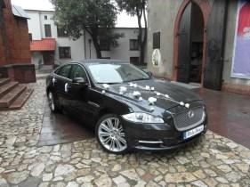 Dekoracja z białych kwiatów Jaguar XJ