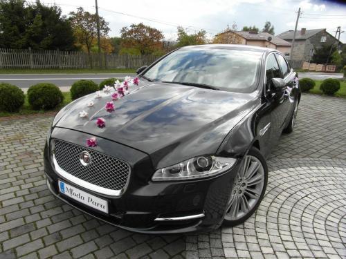 Jaguar XJ dekoracja różowo kremowa