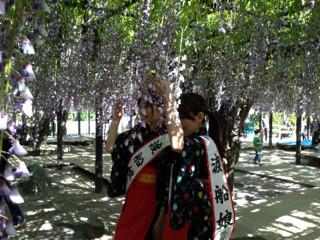 熊野の長藤ガール