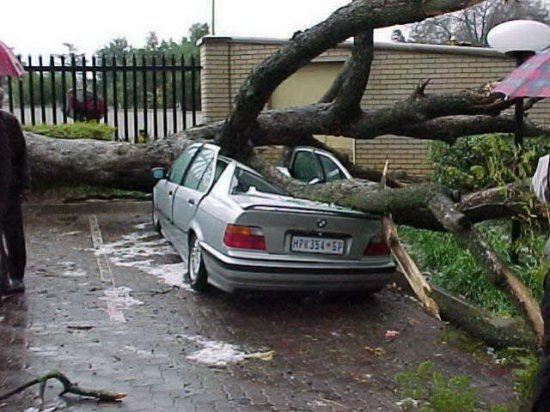 Latest Bmw Car Crash With Tree Free Download