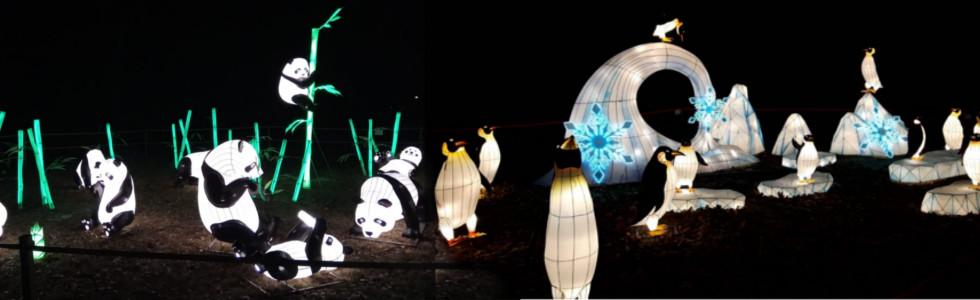 Gaismas festivāls Lielās Ķīnas laternas