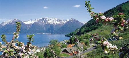 hardanger_Campingpladser i Norge