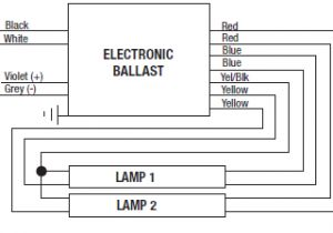 Dimmable Ballast Wiring Diagram Step Dimming Wiring