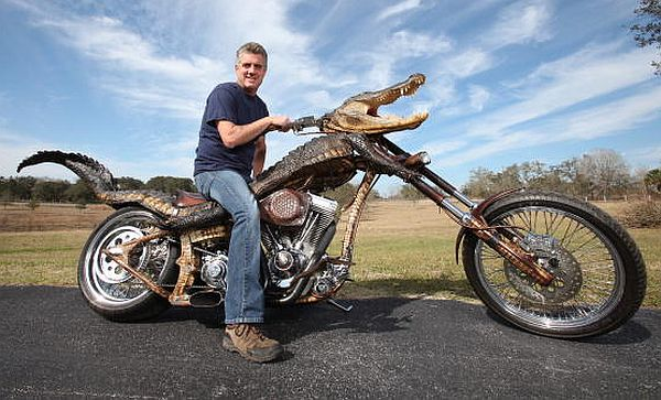 Alligator Motorbike