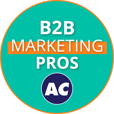B2B Marketing Pros