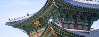Giapponese in 18 mesi: 3 cose da sapere
