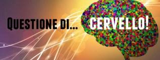 Questione di… cervello!