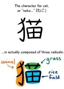Il kanji di gatto, e i suoi primitivi: animale, erba e campo di riso